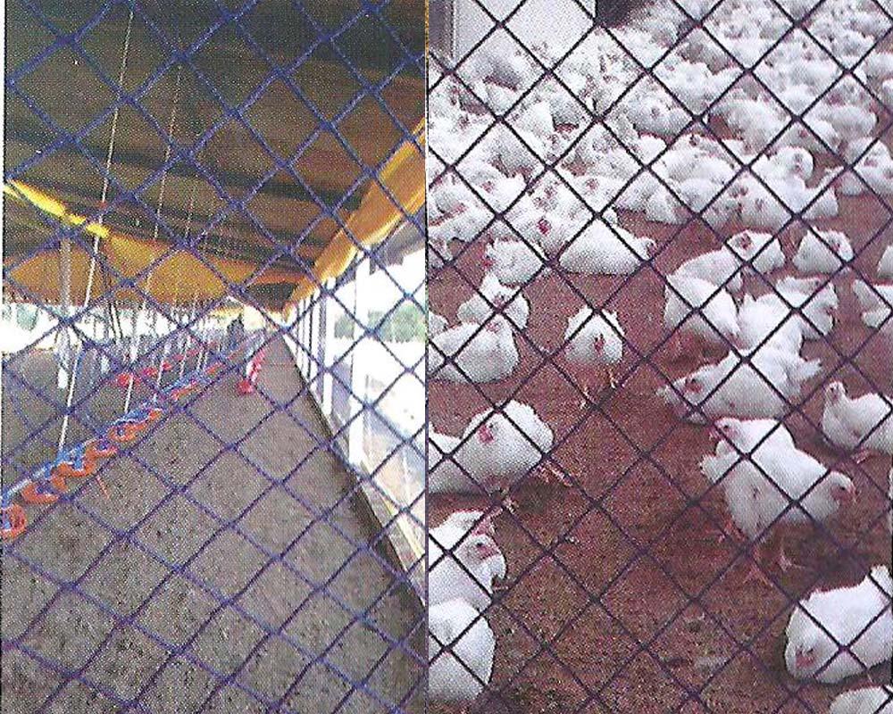 telas-aviarias-estin-02